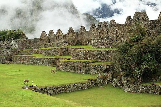 Machu Picchu Peru by Roupen  Baker