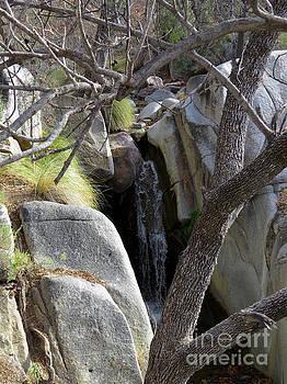Madera Canyon Waterfall by Feva Fotos