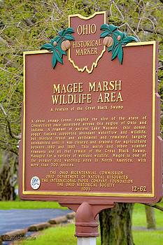 Magee Marsh Wildlife Area by LeeAnn McLaneGoetz McLaneGoetzStudioLLCcom