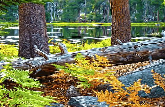 Magic Light Lake by Eastern Sierra Gallery