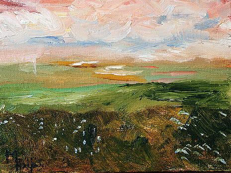 Magic Marsh by Michael Helfen