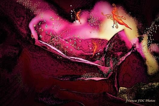 Magic Rose  by Francoise Dugourd-Caput