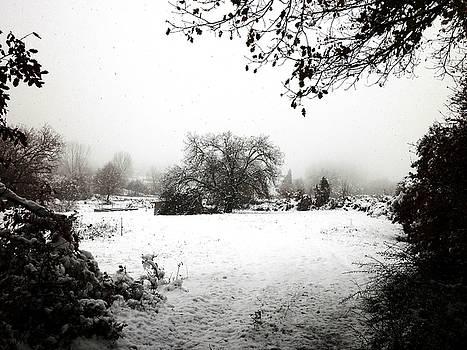 Magic Winter in Sardinia by Donatella Muggianu