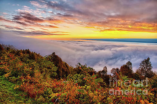 Dan Carmichael - Magnificent Autumn Blue Ridge Sunrise