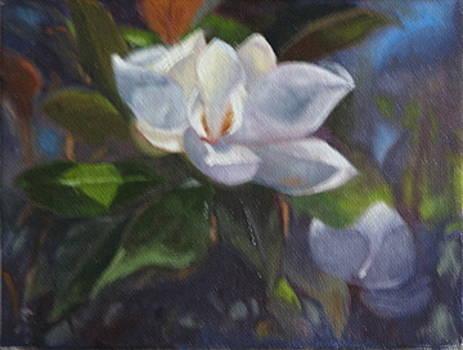 Magnolia by Cynthia Vowell