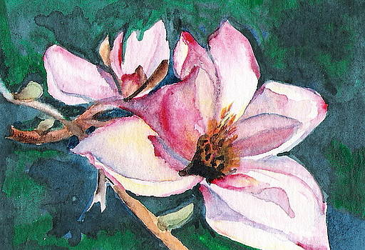 Magnolia by Marsha Woods
