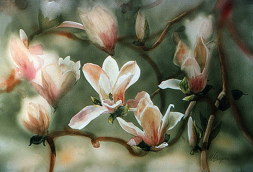 Magnolias in Bloom by Maryann Boysen