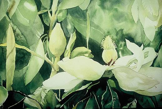 Magnolium Opus by Elizabeth Carr