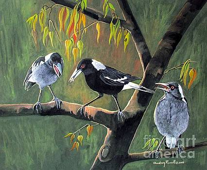 Magpie mother feeding her young by Audrey Russill