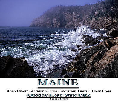 MAINE Quoddy Head State Park by Marty Saccone