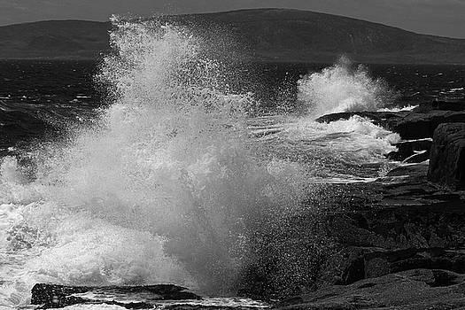 Maine Schoodic Peninsula by Juergen Roth