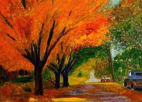 Mainstreet by Scott Hoke