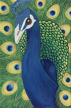 Majestic Peacock by Lisa Bentley