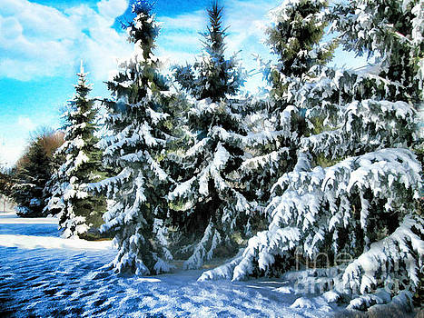 Majestic Winter In New England  by Judy Palkimas