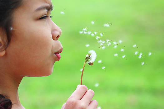 Make a wish by Fir Mamat