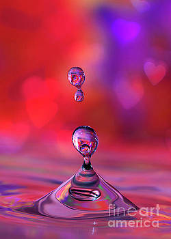 Making A Splash by Darren Fisher