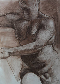 Male Torso by Harry Robertson