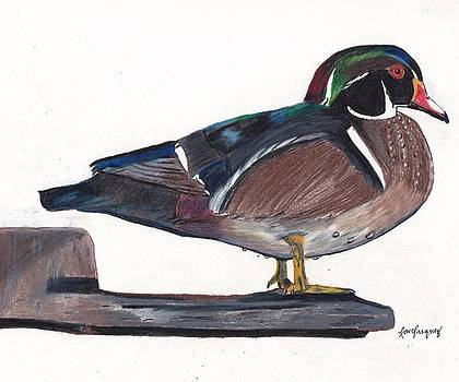 Mallard Duck by Lea Velasquez