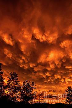 Mammatus Clouds at Sunset by Thomas R Fletcher