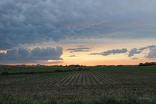 Mammatus Clouds Near Kearney, Nebraska by Andrea Kelley