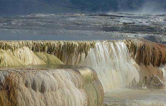 Sandra Bronstein - Mammoth Hot Springs - Yellowstone