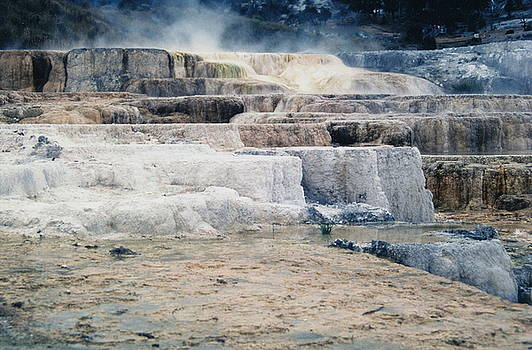 Mammoth Springs by Suzanne Krueger