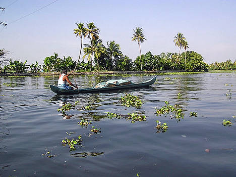 Man boating on the salt water lagoon in Alleppey in Kerala by Ashish Agarwal