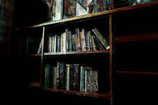 Manago Hotel Library by Lori Seaman