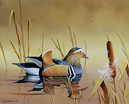 Mandarin Duck by Don Griffiths