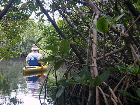 Mangrove kayaker by Steven Scott