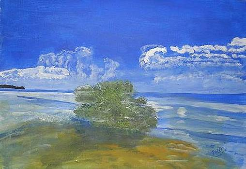 Mangrove Reef by RQ Fields