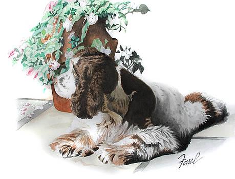 Mans Best Friend by Ferrel Cordle