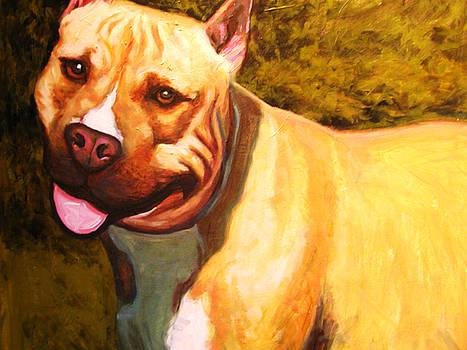 Man's Best Friend by John Sibley