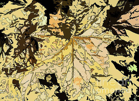 Maple Abstract by Betsy Zimmerli