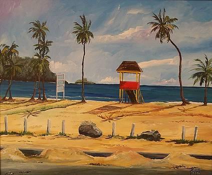 Maracas Bay 4 by Samantha Rochard