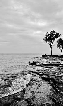 Marblehead Zen by Daniel Thompson