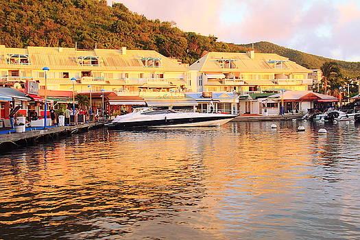 Marigot Marina, St. Martin by Roupen  Baker