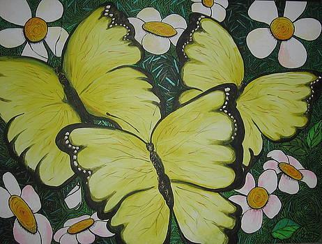 Mariposa by Samantha Rochard