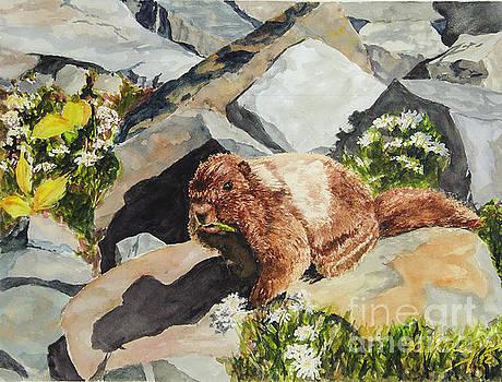 Marmot with Attitue by Jim Krug