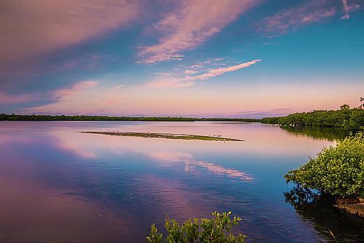 Marsh At Sunrise by Steven Ainsworth