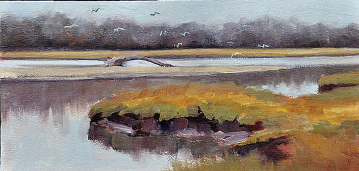 Marsh Low Tide by Mary Byrom