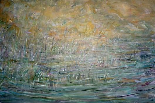 Marsh Melody   by Sara Credito