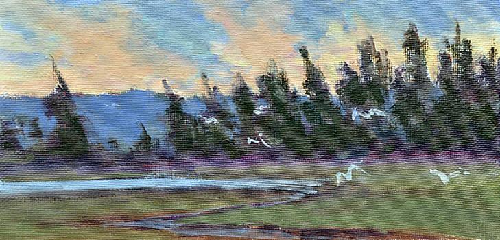 Marsh PInes by Mary Byrom