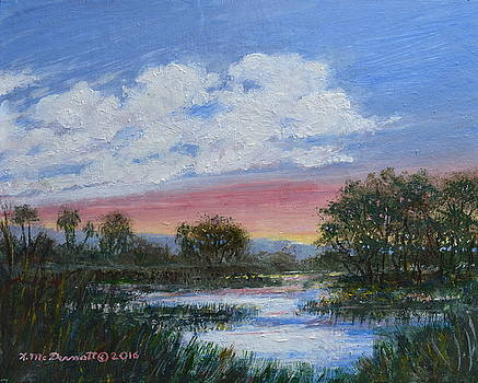 Marsh Reflections by Kathleen McDermott