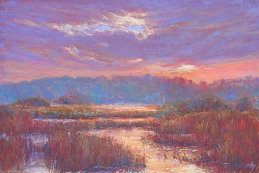 Marshland Mood by Michael Camp