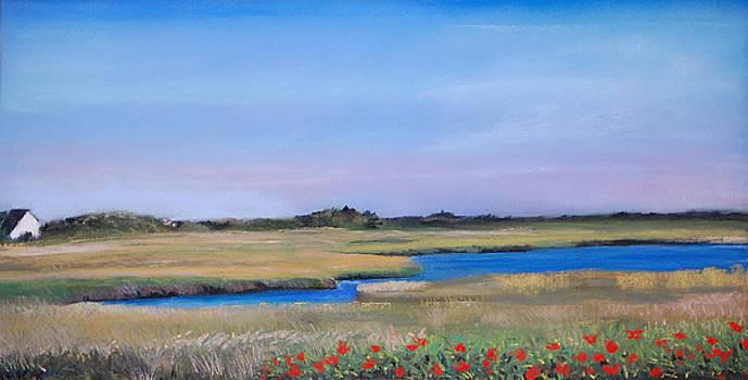 Marshside by Cindy Plutnicki