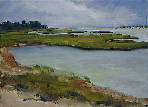 Martha's Vineyard Marsh by James Reynolds