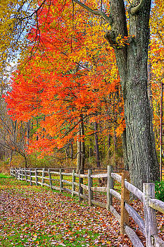 Maryland Country Roads - Autumn Colorfest No. 11 - Eylers Valley Catoctin Mountains Frederick County by Michael Mazaika