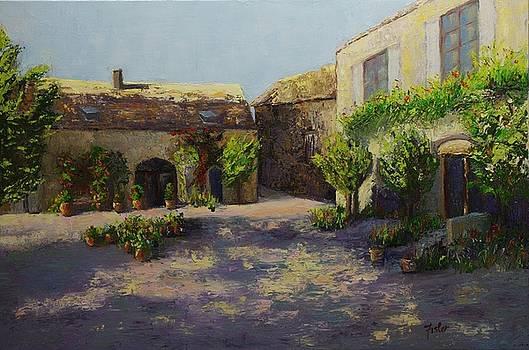 Mas de Flory, France by Linda Riesenberg Fisler