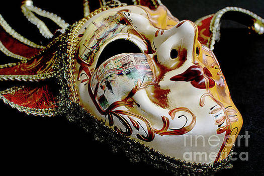 Mask Of Venice by Steve Purnell